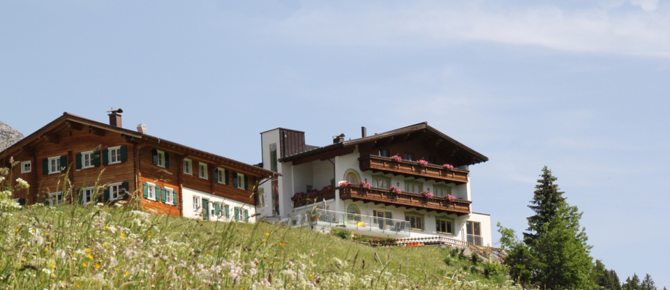 Pension Bergland in Lech / Oberlech - summer blooms